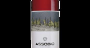 Assobio Rosé 2014