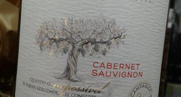 Salton Paradoxo Cabernet Sauvignon 2011