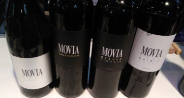 Conheça os vinhos da Eslovênia