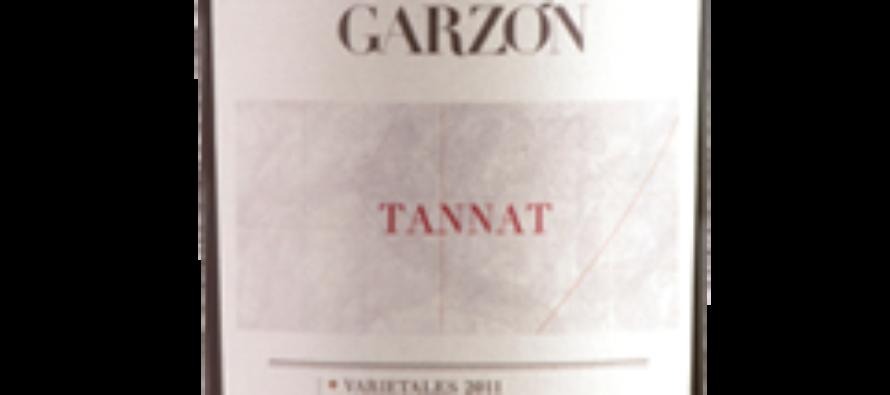 Garzón Tannat vai bem com carne grelhada