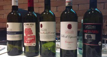 Tenuta di Capezzana, vinhos expressivos, de vinhedos orgânicos