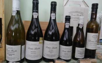 Dona Berta, tintos e brancos de vinhas velhas do Douro Superior