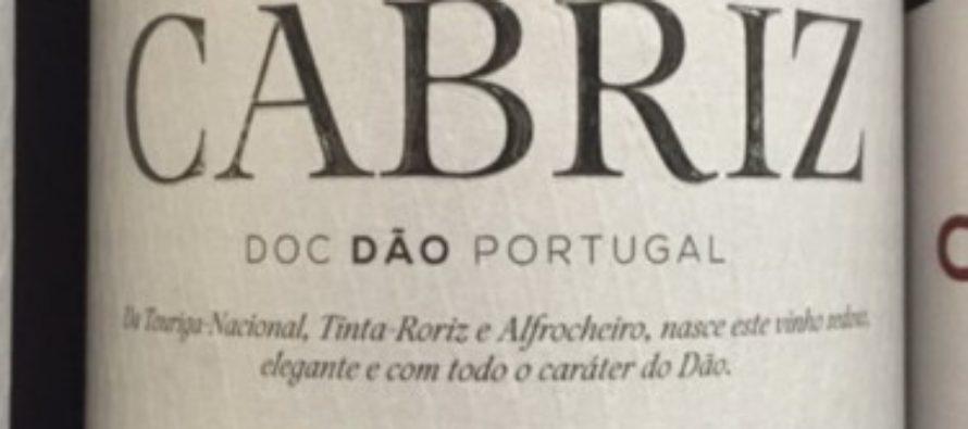 Vinhos portugueses da Global Wines, agora com distribuição própria no Brasil