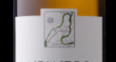 Meandro Branco, novidade da Quinta do Vale Meão