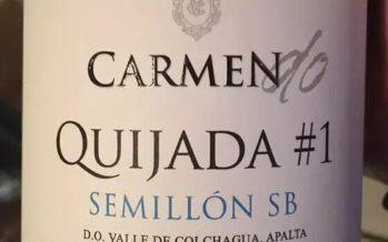 A chilena Viña Carmen apresenta linha DO, com intervenção mínima