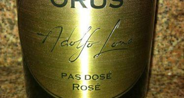 A vinicultura brasileira e as lições do mestre Adolfo Lona