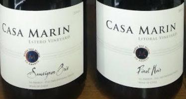 Vinhos da premiada vinícola chilena Casa Marín voltam ao Brasil