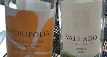 Quinta do Vallado apresenta novas safras de seus grandes vinhos