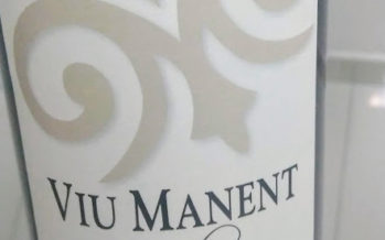 Viu Manent Clasico Carmenère