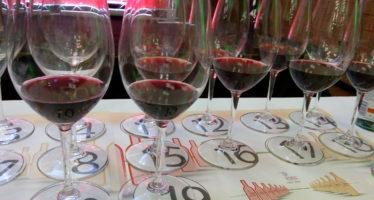 Dois super guias trazem os melhores vinhos da Itália e da América do Sul