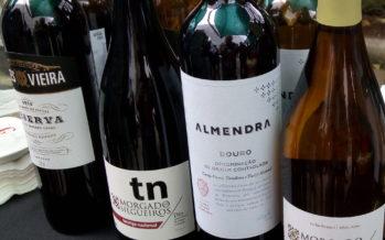 Evento anual da La Pastina mostra alimentos e bons vinhos do catálogo da casa