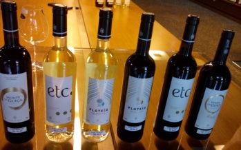 Monte do Álamo, vinhos alentejanos com personalidade e fáceis de beber