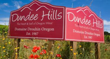 Os elegantes Pinot Noir e Chardonnay da francesa Drouhin no Oregon americano