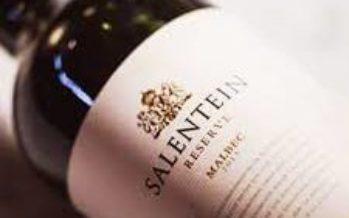 Salentein Reserve Malbec se destaca pela qualidade em boa faixa de preço