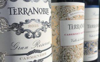 A chilena Terranoble renova linha e oferece brancos e tintos muito bem feitos