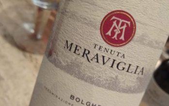 Os bons vinhos de Alejandro Bulgheroni na Itália