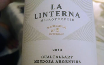 Chegam ao Brasil os vinhos especiais Bemberg, dos donos da gigante argentina Peñaflor