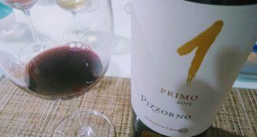 O pequeno Uruguai, em novo ciclo, produz grandes vinhos