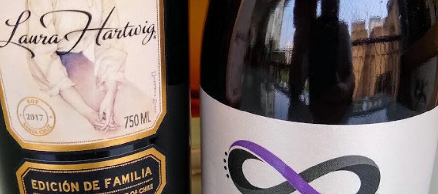 Importadora Novo Chile traz vinhos de vinícolas pequenas e muito especiais