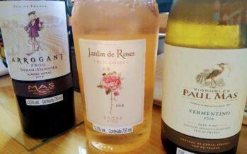 Grupo francês Paul Mas completa 20 anos em 2020 e se torna símbolo da renovação vinícola do Languedoc